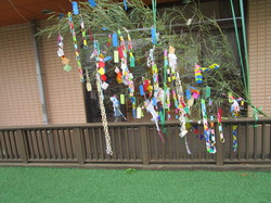 tanabata02-4.JPG